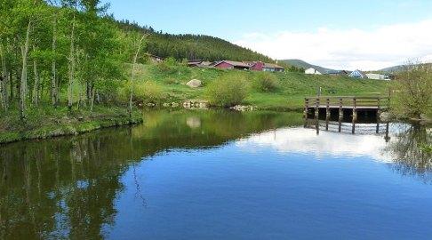 kids-fishing-pond-nederland