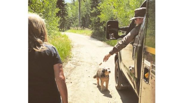 mountain-folk-tales-linda-hurth-and-dog
